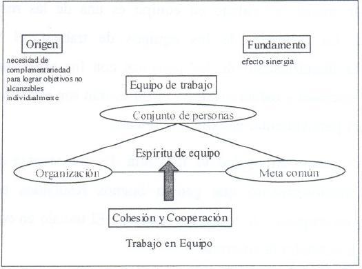 TRABAJO EN EQUIPO CONCLUSIN DEL TRABAJO EN EQUIPO